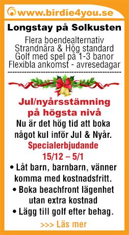 julannons-2015